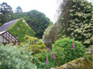 Beautiful gardens at Auchencheyne holiday cottage